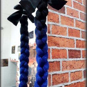 culík černo-modrý