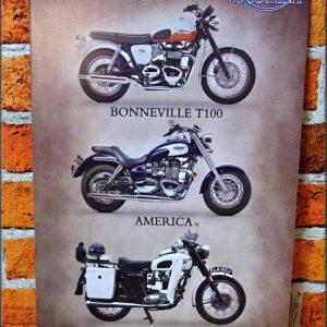plechová cedule triumph motorcycle